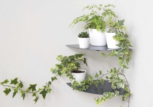 Étagère murale pour plantes L24 cm - Lot de 2